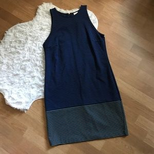 Blue Striped Meorna Zip Back Dress
